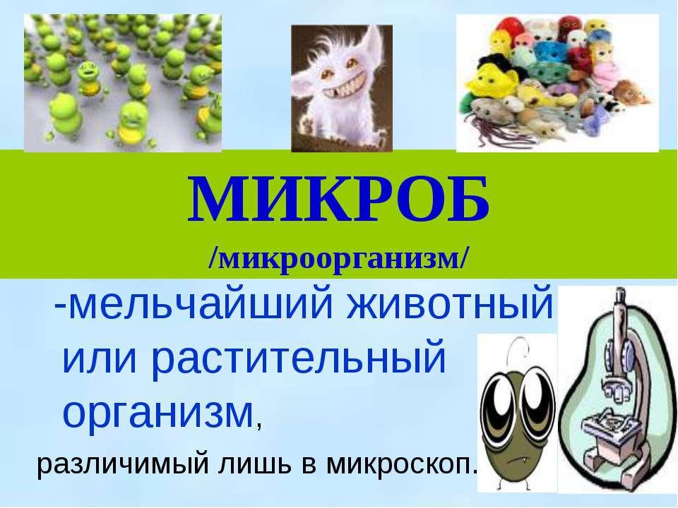 МИКРОБ /микроорганизм/ -мельчайший животный или растительный организм, различ...