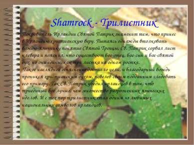 Shamrock - Трилистник Покровитель Ирландии Святой Патрик знаменит тем, что пр...