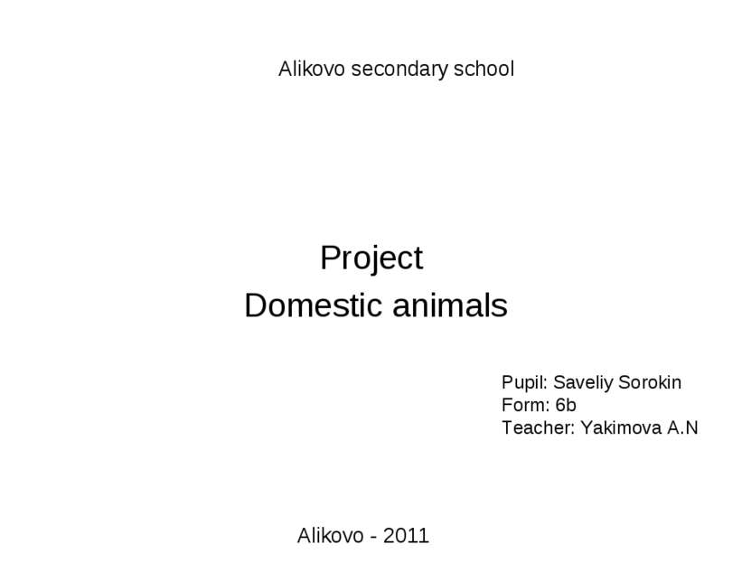 Pupil: Saveliy Sorokin Form: 6b Teacher: Yakimova A.N Projeсt Domestic animal...