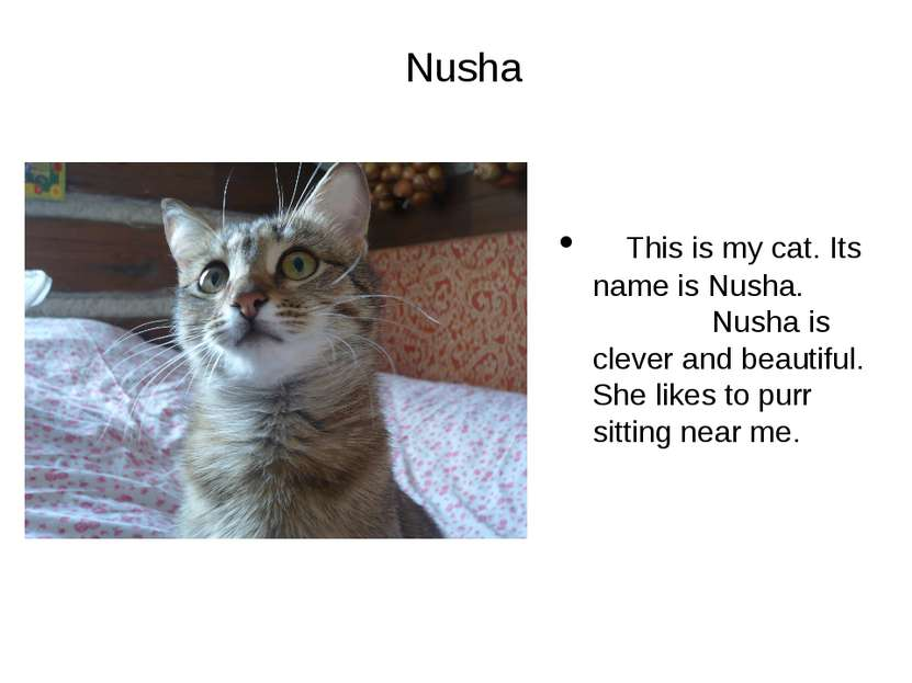 Nusha This is my cat. Its name is Nusha. Nusha is clever and beautiful. She l...