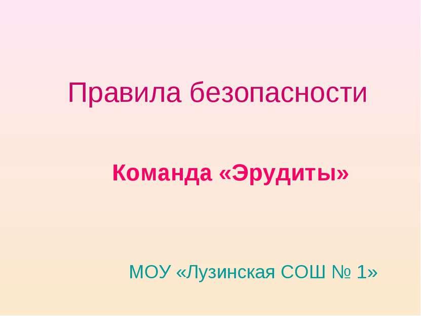Правила безопасности Команда «Эрудиты» МОУ «Лузинская СОШ № 1»