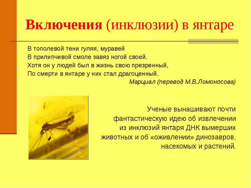 Включения (инклюзии) в янтаре В тополевой тени гуляя, муравей В прилипчивой с...