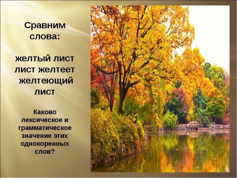 Сравним слова: желтый лист лист желтеет желтеющий лист Каково лексическое и г...
