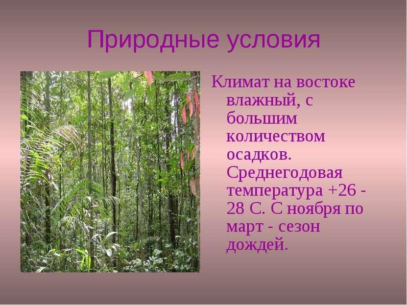 Природные условия Климат на востоке влажный, с большим количеством осадков. С...