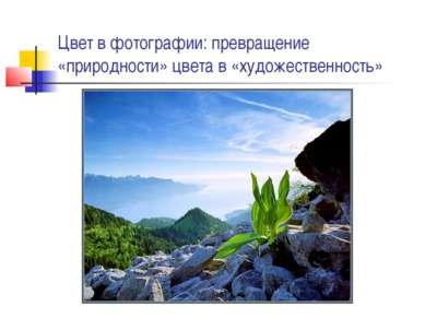 Цвет в фотографии: превращение «природности» цвета в «художественность»