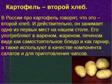 Картофель – второй хлеб. В России про картофель говорят, что это – второй хле...