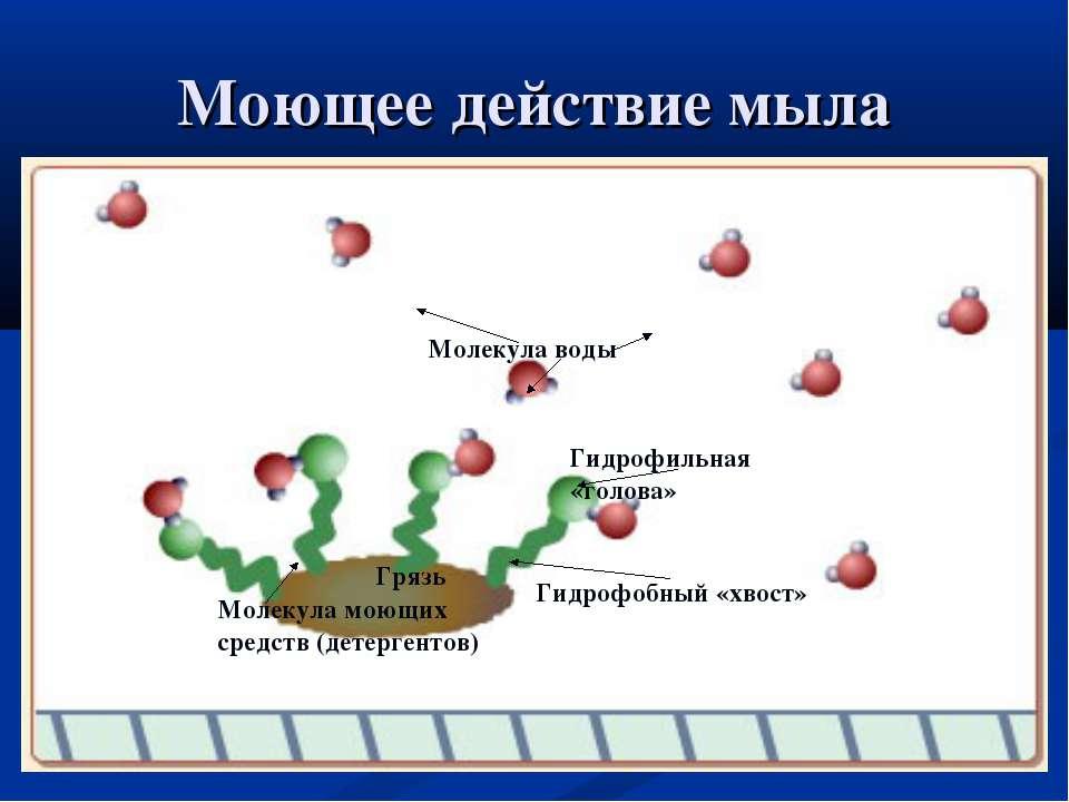 Моющее действие мыла Грязь Молекула воды Гидрофобный «хвост» Гидрофильная «го...