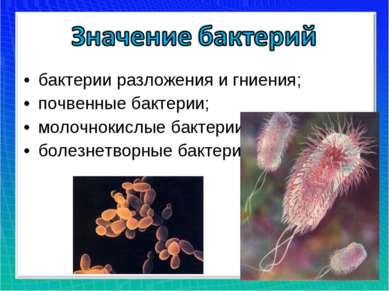 бактерии разложения и гниения; почвенные бактерии; молочнокислые бактерии; бо...