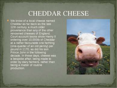CHEDDAR CHEESE We know of a local cheese named Cheddar as far back as the lat...