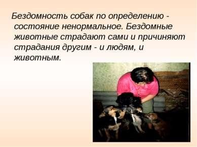 Бездомность собак по определению - состояние ненормальное. Бездомные животные...