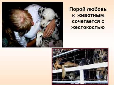 Порой любовь к животным сочетается с жестокостью
