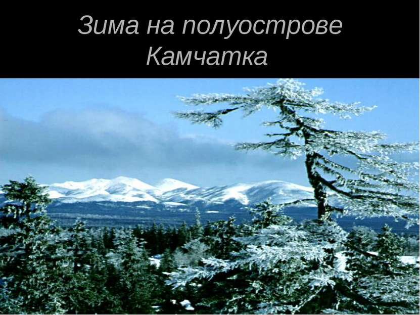Зима на полуострове Камчатка