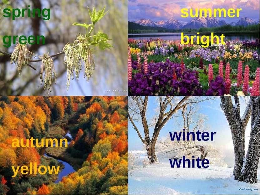 spring green summer bright autumn yellow winter white