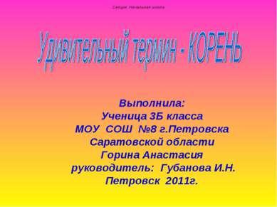 Выполнила: Ученица 3Б класса МОУ СОШ №8 г.Петровска Саратовской области Горин...