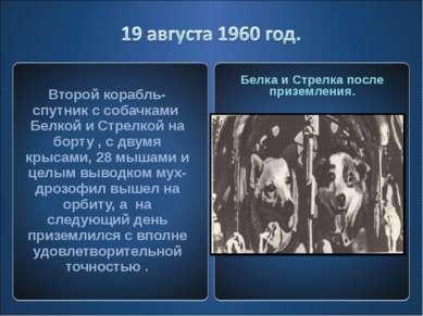 Второй корабль-спутник с собачками Белкой и Стрелкой на борту , с двумя крыса...