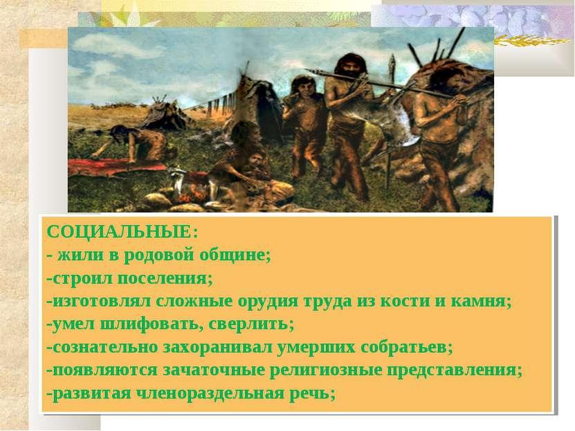 СОЦИАЛЬНЫЕ: - жили в родовой общине; -строил поселения; -изготовлял сложные о...