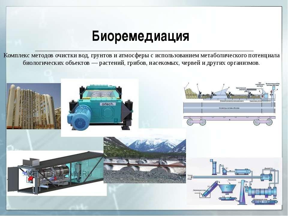 Биоремедиация Комплекс методов очистки вод, грунтов и атмосферы с использова...