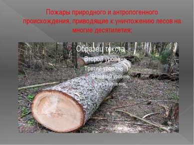 Пожары природного и антропогенного происхождения, приводящие к уничтожению ле...