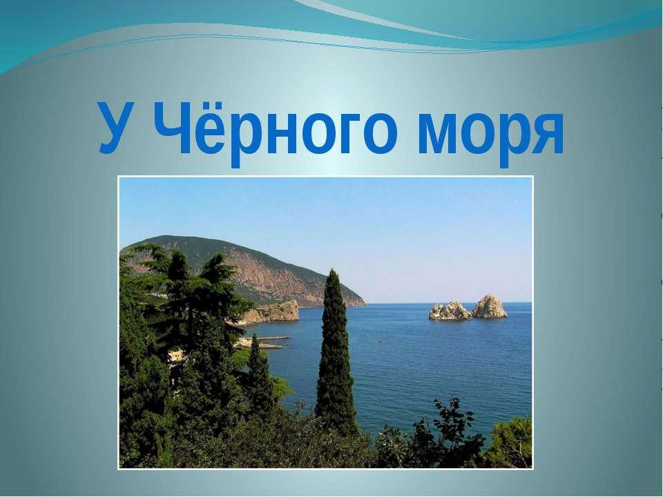 У Чёрного моря