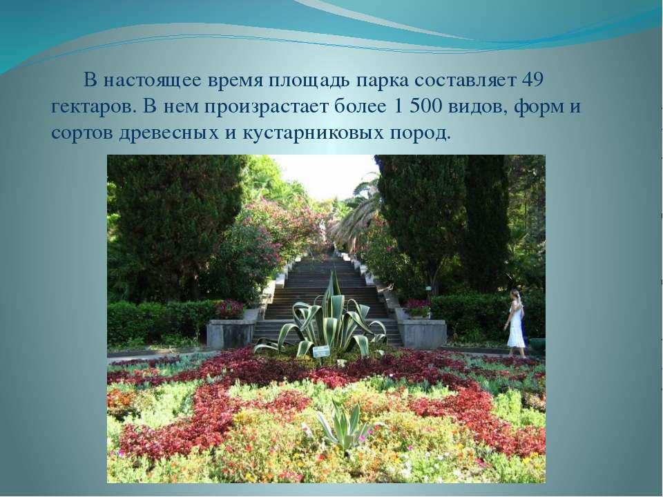 В настоящее время площадь парка составляет 49 гектаров. В нем произрастает бо...