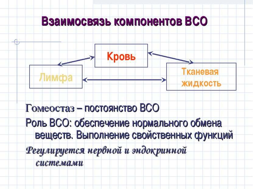 Взаимосвязь компонентов ВСО Гомеостаз – постоянство ВСО Роль ВСО: обеспечение...