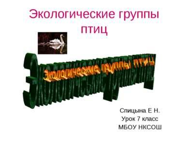 Экологические группы птиц Спицына Е Н. Урок 7 класс МБОУ НКСОШ