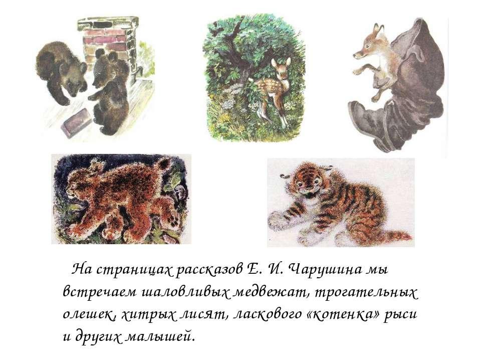На страницах рассказов Е. И. Чарушина мы встречаем шаловливых медвежат, трога...