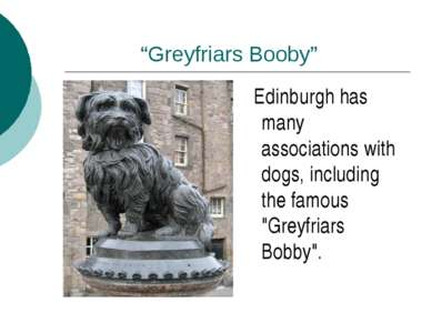 """Greyfriars Booby"" Edinburgh has many associations with dogs, including the f..."