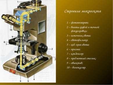 Строение микроскопа 1 – фотоаппарат; 2 – винты грубой и точной фокусировки; 3...