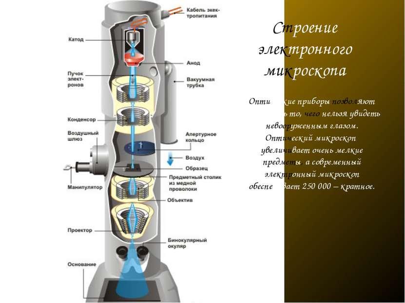 Строение электронного микроскопа Оптические приборы позволяют разглядеть то, ...
