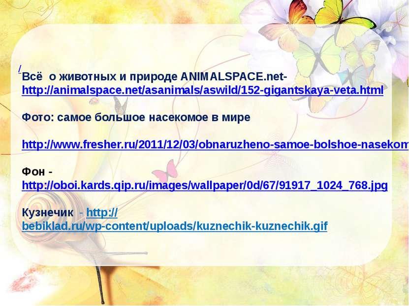 / Всё о животных и природе ANIMALSPACE.net- http://animalspace.net/asanimals/...