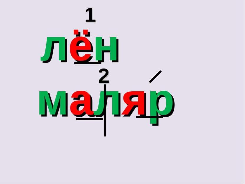 лён маляр 1 2