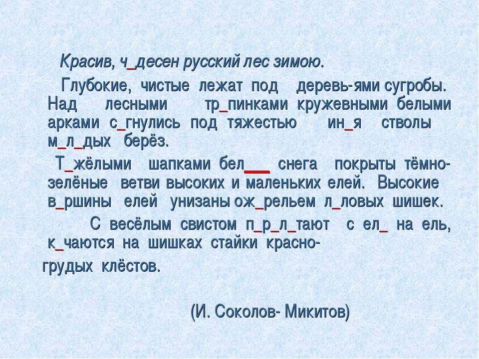 Красив, ч_десен русский лес зимою. Глубокие, чистые лежат под деревь-ями сугр...