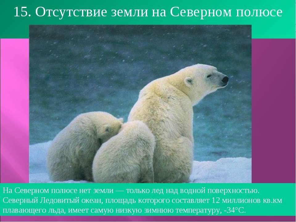 15. Отсутствие земли на Северном полюсе На Северном полюсе нет земли — только...