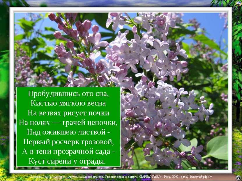 Пробудившись ото сна, Кистью мягкою весна На ветвях рисует почки На полях — г...