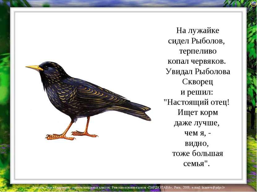 На лужайке сидел Рыболов, терпеливо копал червяков. Увидал Рыболова Скворец и...