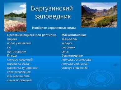Баргузинский заповедник Наиболее охраняемые виды:
