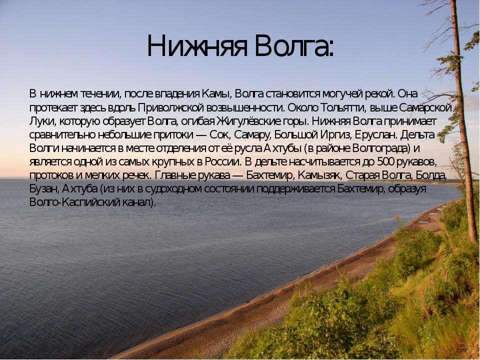 Нижняя Волга: В нижнем течении, после впадения Камы, Волга становится могучей...