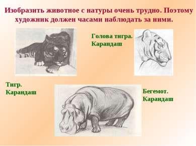 Изобразить животное с натуры очень трудно. Поэтому художник должен часами наб...