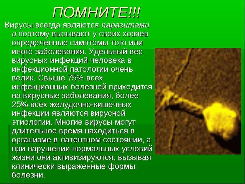 ПОМНИТЕ!!! Вирусы всегда являются паразитами и поэтому вызывают у своих хозяе...