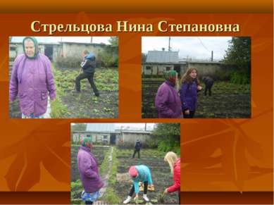 Стрельцова Нина Степановна