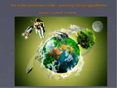 Все живые организмы и почва – участники единого круговорота жизни на нашей пл...