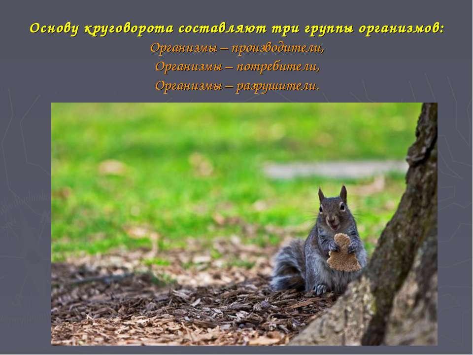 Основу круговорота составляют три группы организмов: Организмы – производител...