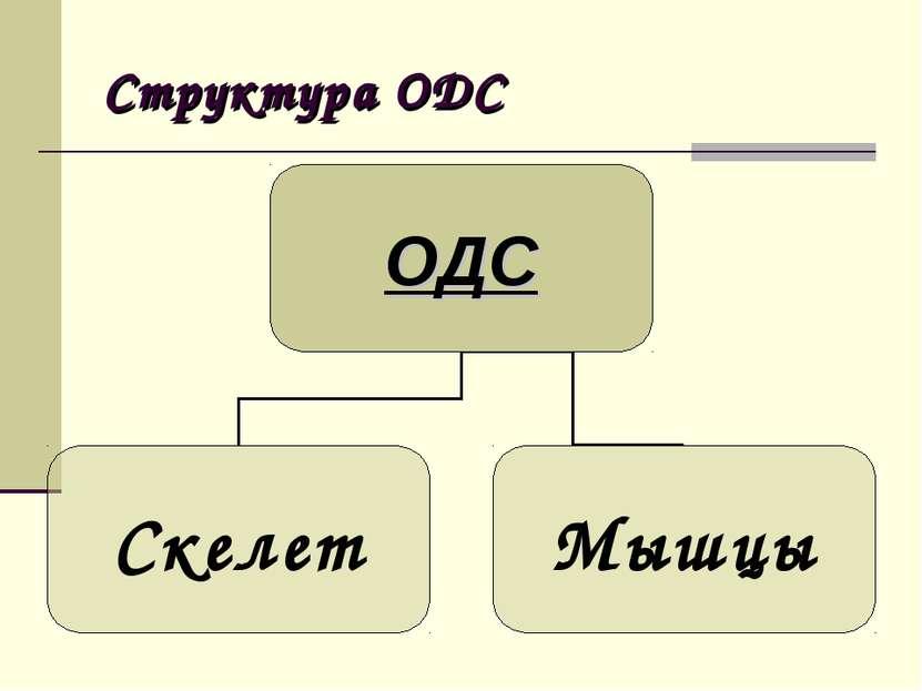 Структура ОДС