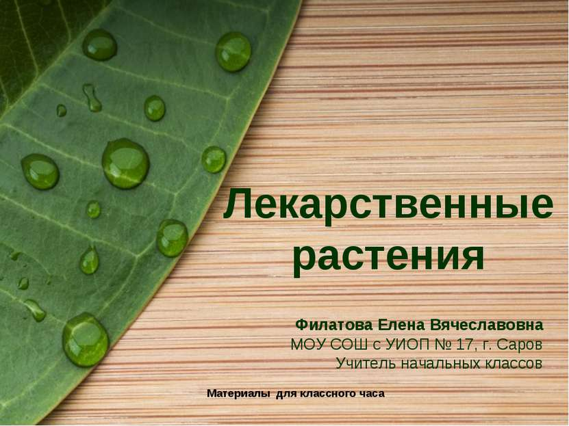 Лекарственные растения Материалы для классного часа Филатова Елена Вячеславов...