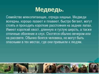 Медведь. Семейство млекопитающих, отряда хищных. Медведи всеядны, хорошо лаза...