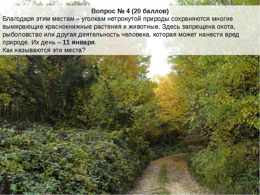 Вопрос № 4 (20 баллов) Благодаря этим местам – уголкам нетронутой природы сох...