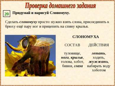 Сделать слономуху просто: нужно взять слона, присоединить к брюху ещё пару но...
