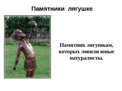 Памятники лягушке Памятник лягушкам, которых ловили юные натуралисты.