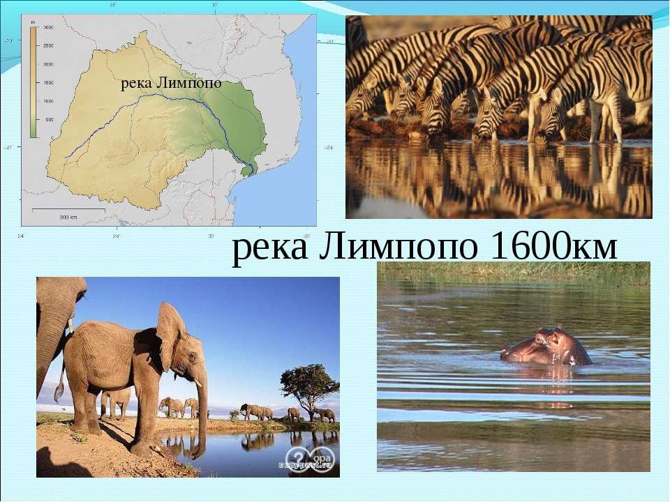 река Лимпопо река Лимпопо 1600км
